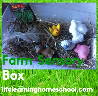 farmsensorybox
